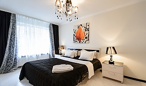 Luxury one-bedroom king-size bed apartment with bath and shower, One Bedroom, 002