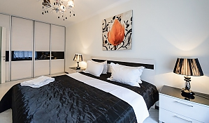 Luxury one-bedroom king-size bed apartment with bath and shower, One Bedroom, 004