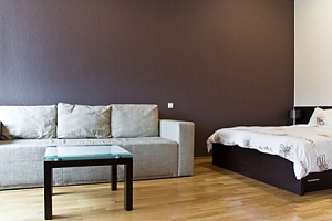 Spacious street view studio apartment with jaсuzzi and sofa bed, Studio, 002