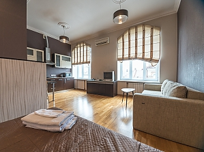Spacious street view studio apartment with jaсuzzi and sofa bed, Studio, 003