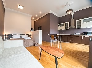 Spacious street view studio apartment with jaсuzzi and sofa bed, Studio, 001