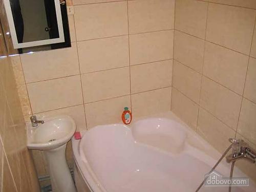 Просторные апартаменты, 1-комнатная (71309), 003