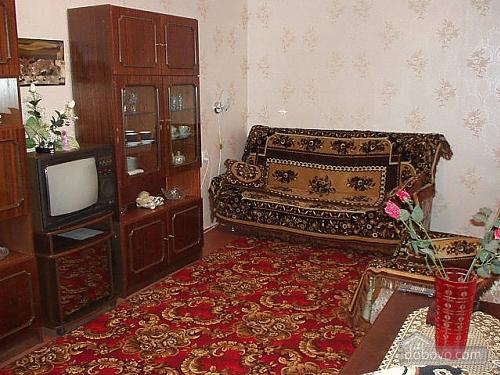 Apartment of standard class, Un chambre (71375), 002