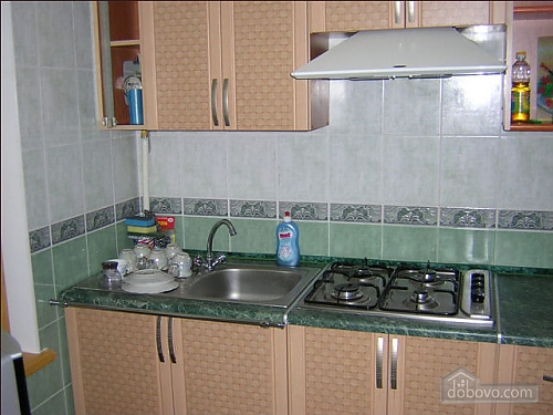 Apartment in the central area, One Bedroom (93891), 004