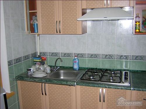 Apartment in the central area, Un chambre (93891), 004