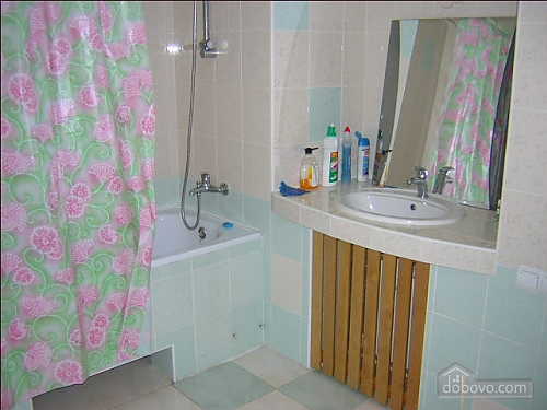 Apartment in the central area, One Bedroom (93891), 005