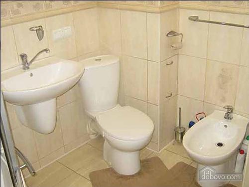 Современные люкс апартаменты, 3х-комнатная (49122), 005