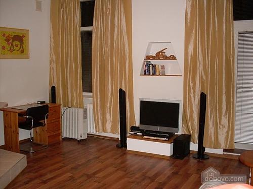 Spacious apartment in the heart of Kiev, Studio (49518), 001