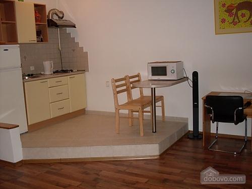 Spacious apartment in the heart of Kiev, Studio (49518), 003