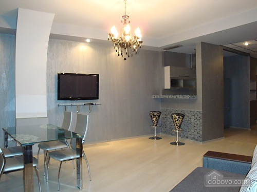 Excellent apartment with new renovation, Una Camera (19251), 007