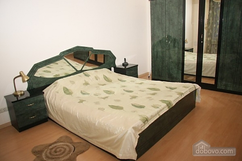 Apartment in the city center, One Bedroom (42031), 001