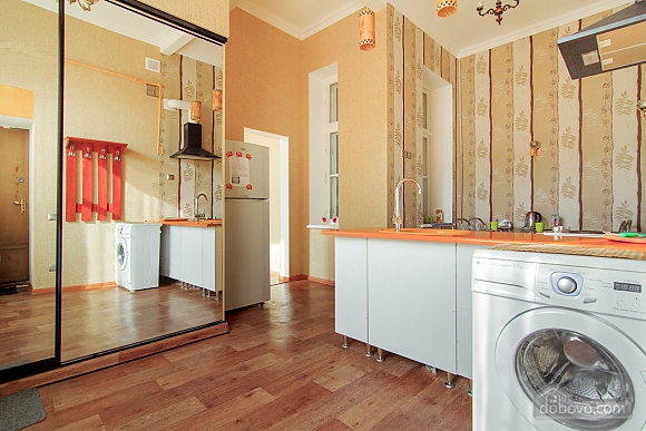 Beautiful apartment near the Opera House in the heart of the city, Monolocale (17086), 002