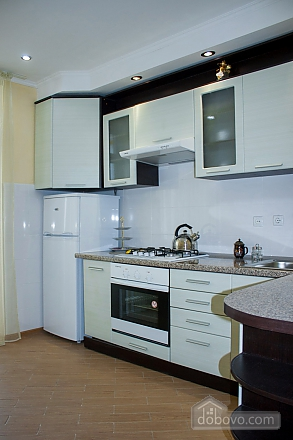Elite apartment in the center of Truskavets, Studio (55381), 006