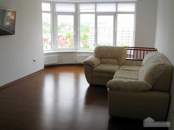 Luxury apartment in Truskavets, Un chambre (45073), 005