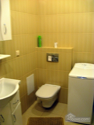 Luxury apartment in Truskavets, Un chambre (45073), 007