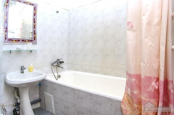 Квартира в центре Киева, 1-комнатная (71799), 010