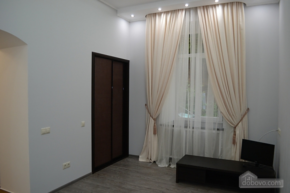 Apartment in the center opposite the Potocki Palace, Studio (82376), 002