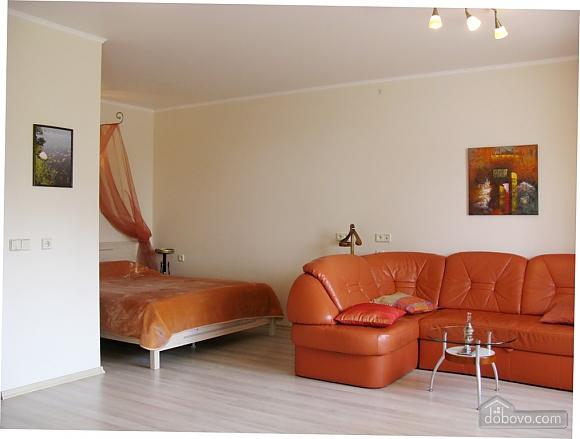 Квартира с прекрасным видом из окна, 1-комнатная (85638), 006