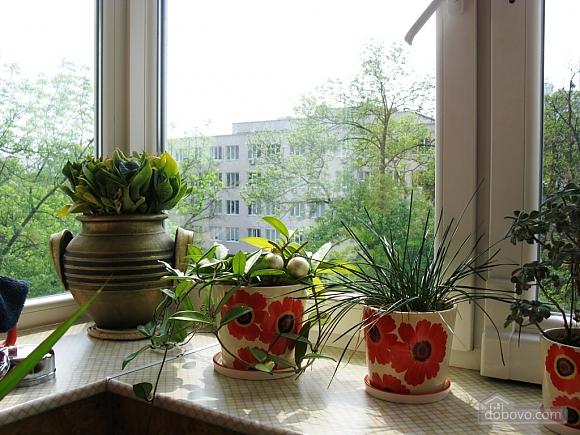 Квартира с прекрасным видом из окна, 1-комнатная (85638), 012