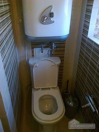Апартаменти Chalet в селі Молодіжне, 1-кімнатна (73962), 015