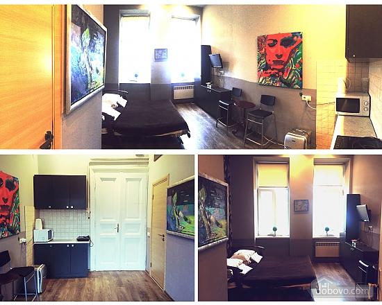 Квартира в центрі, 1-кімнатна (17403), 005
