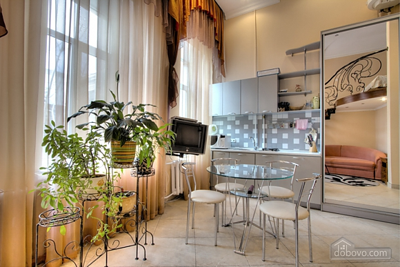 Beautiful duplex apartment, Studio (91306), 008