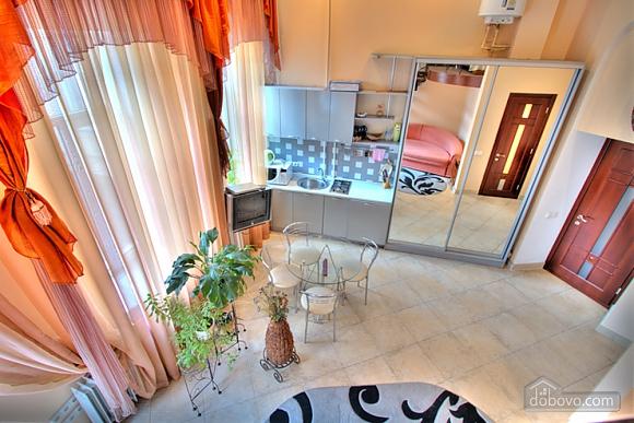 Гарна дворівнева квартира, 1-кімнатна (91306), 012