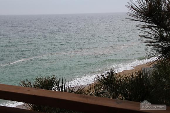 Мини отель на берегу моря, 1-комнатная (20217), 003