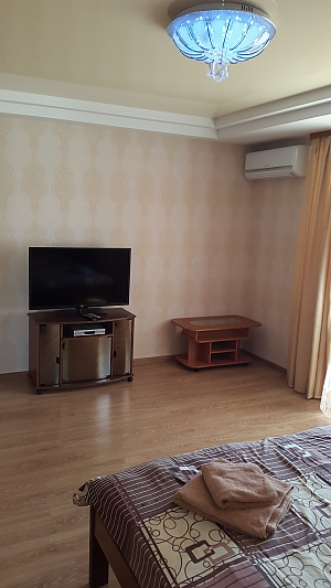 Apartments on Lesi Ukrainky Street, Studio, 002