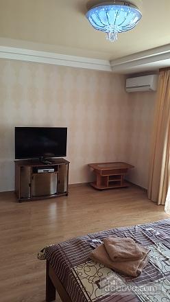 Апартаменти на Лесі Українки, 1-кімнатна (34682), 002