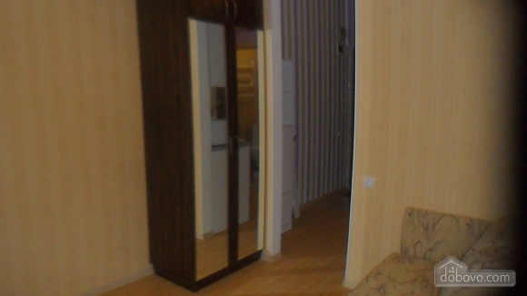 Apartment in the center near the park, Monolocale (98455), 004