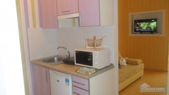 Apartment in the center near the park, Studio (98455), 005