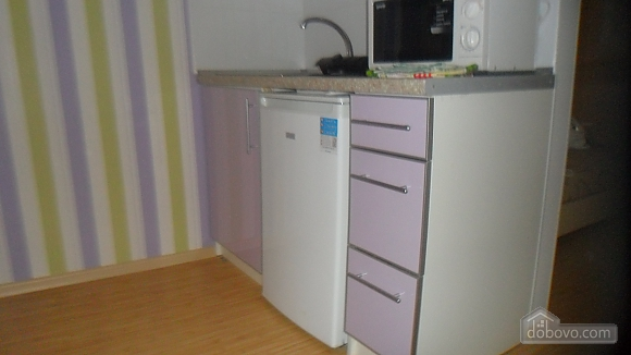 Apartment in the center near the park, Studio (98455), 006