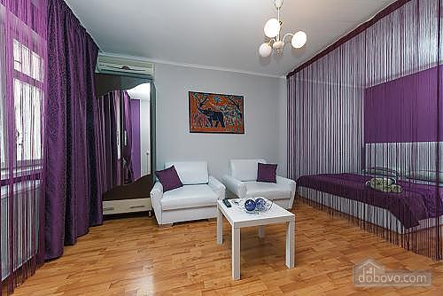 Apartment on Besarabka, Studio (56914), 003