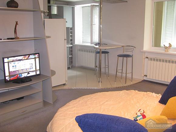 Квартира в центрі, 1-кімнатна (74282), 005