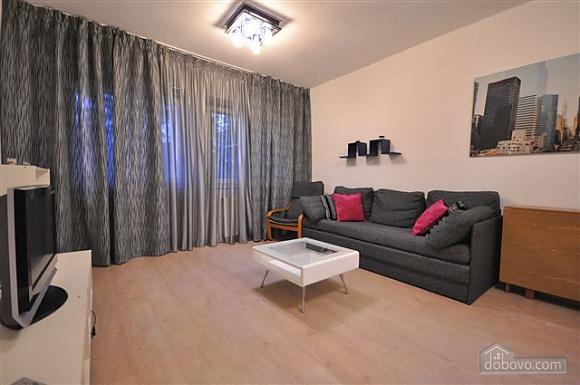 Apartment in the center near City Garden, Un chambre (42103), 004