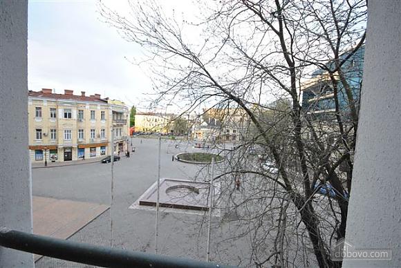 Apartment in the center near City Garden, Un chambre (42103), 018