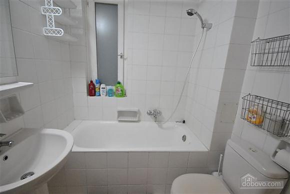 Apartment in the center near City Garden, Un chambre (42103), 019
