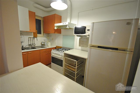 Apartment in the center near City Garden, Un chambre (42103), 020