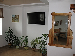 Kozatsky style apartment, Studio, 004