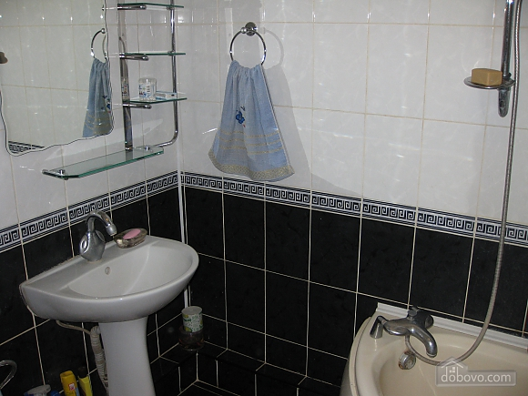 Apartment in blue tones, Studio (11398), 005