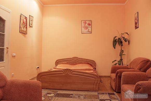 Квартира в историческом центре города, 1-комнатная (52718), 003