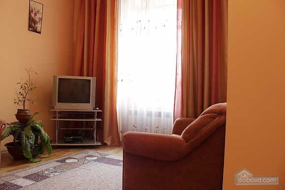 Apartment in the historical center, Monolocale (52718), 004