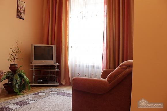 Квартира в историческом центре города, 1-комнатная (52718), 004
