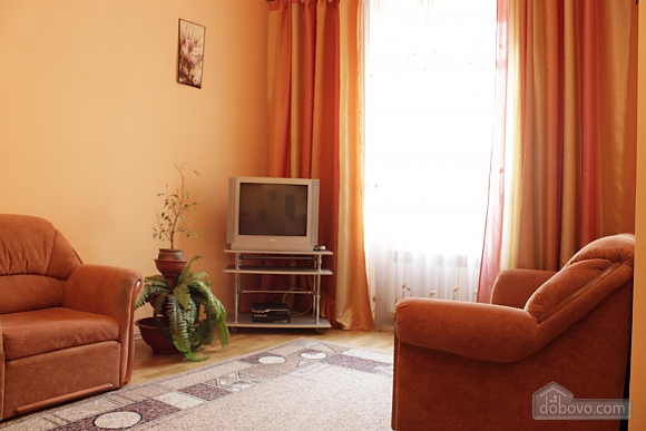 Apartment in the historical center, Monolocale (52718), 010