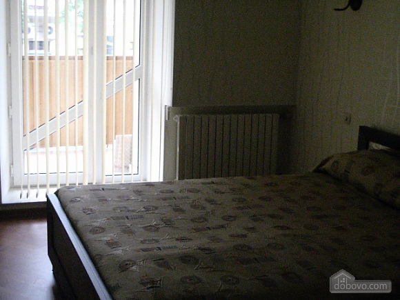 Light apartment in the city center, One Bedroom (66915), 002