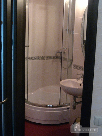 Light apartment in the city center, One Bedroom (66915), 004