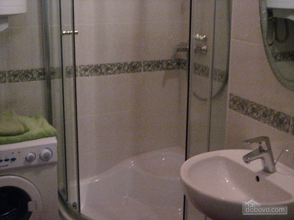 Light apartment in the city center, One Bedroom (66915), 005