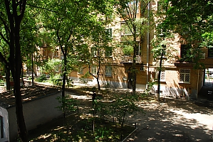 19А Volodymyrska, Un chambre, 013