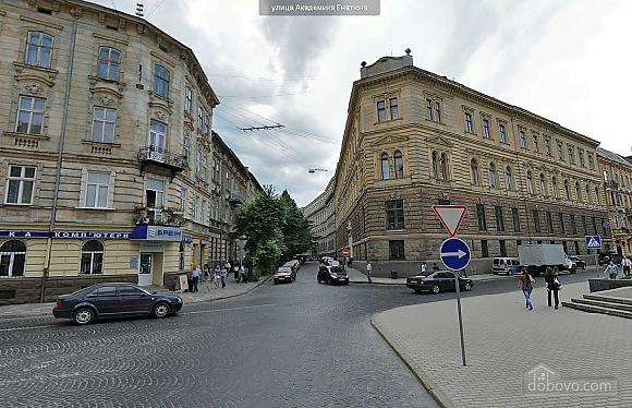 VIP apartment in the center, Studio (54806), 027
